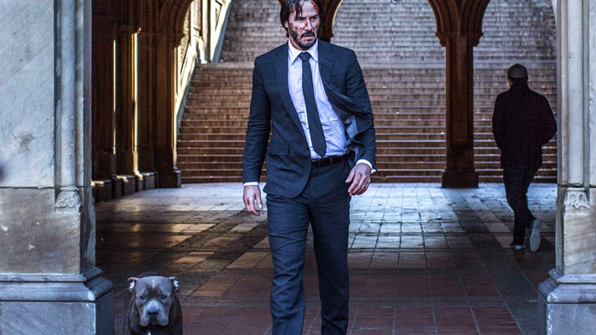 John Wick 3 Dog Is Back On Set For Filming More Scenes Of Boogeyman